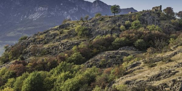 Der von Felsplatten durchzogene Hügel mit seiner besonderen Vegetation ist nicht nur für Geschichtsinteressierte, sondern auch für Naturliebhaber ein ganz besonderer Ort
