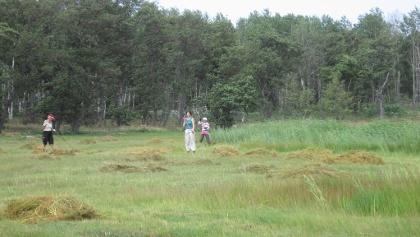 Le bénévolat est très populaire dans le parc national de l'Archipel.