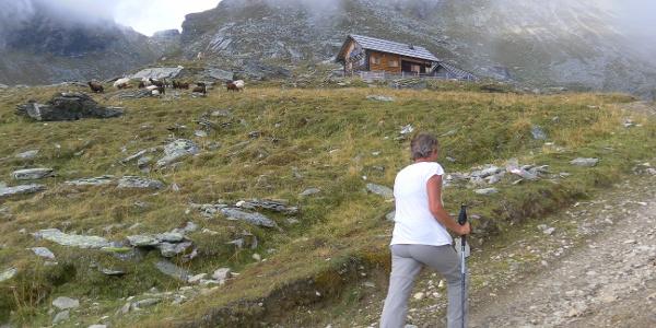 Ochsenhütte in der Faschaun