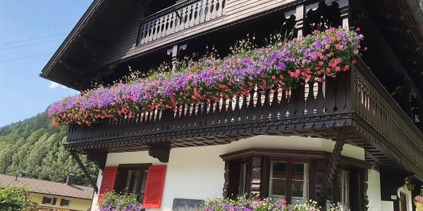 Haus Berta im Sommer