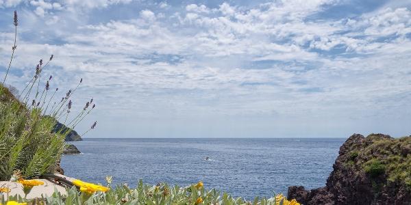 Coastline of Framura