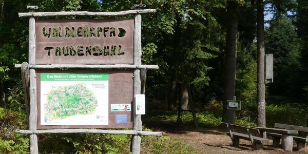 Infotafel am Waldlehrpfad in Taubensuhl