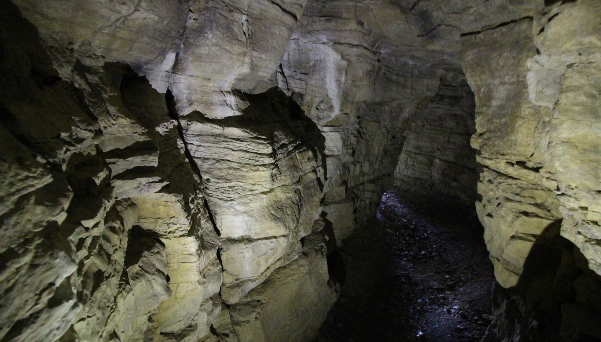 Venusgrotte In Den Hörselbergen Bei Eisenach Höhle