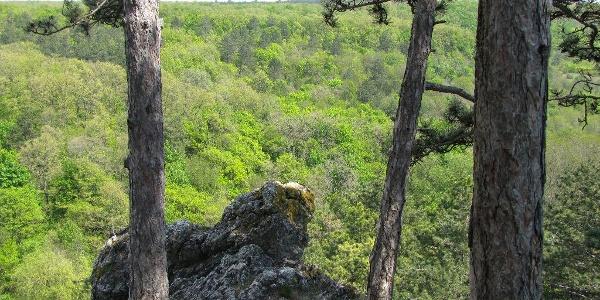 Kilátás a balatonfüredi Koloska-sziklákról