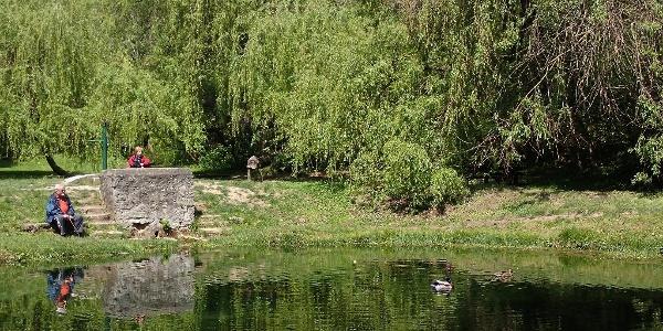 A népszerű balatonfüredi kirándulóhely, a Koloska-forrás