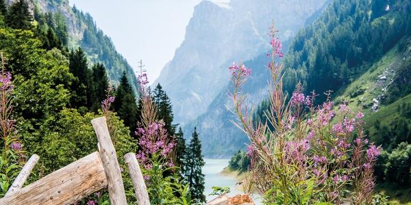 Blick auf den Gigerwald-Stausee
