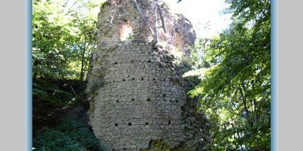 Burgruine Kynžvart (Königswart)