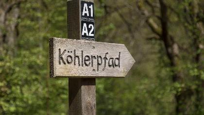 Wegweiser am Köhlerpfad