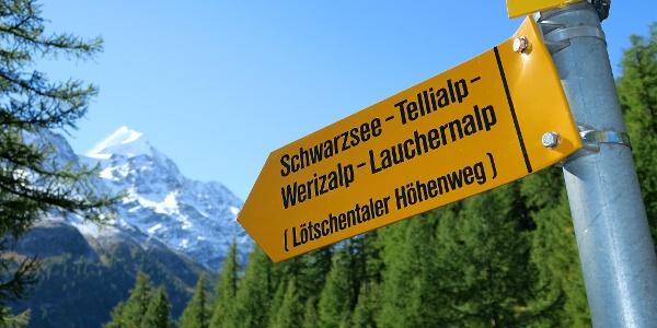 Gut markiert: Lötschentaler Höhenweg.