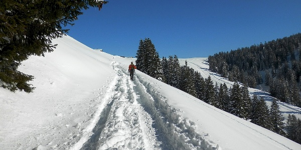Wanderer auf der Schneeschuhroute um den Flügenspitz