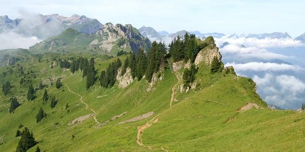 Höhenweg bei der Schynige Platte.