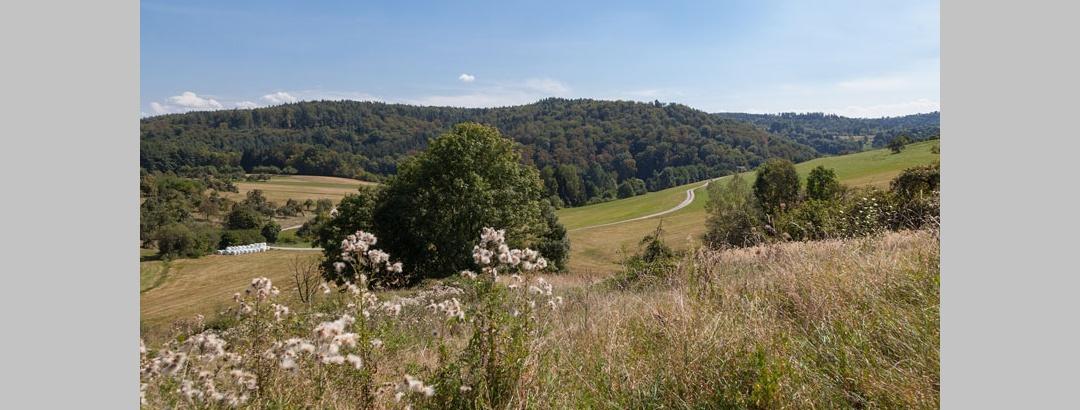 Berglen Landschaft