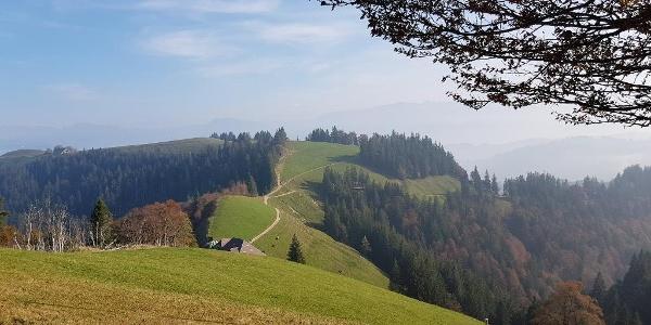 Blick zurück Richtung Stächelegg