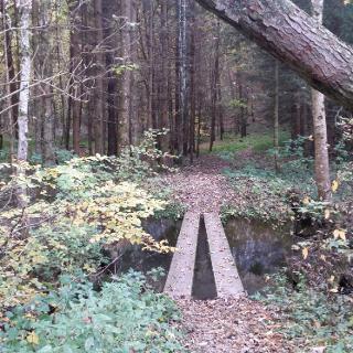 Brücke über den Schlierbach