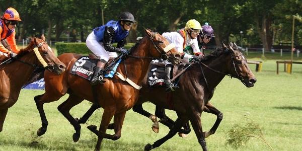 Pferderennen Landgestüt Zweibrücken