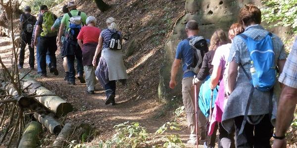 Die Wandergruppe PWV Insheim