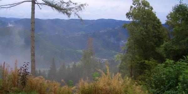 Blick vom Farrenkopf nach Osten