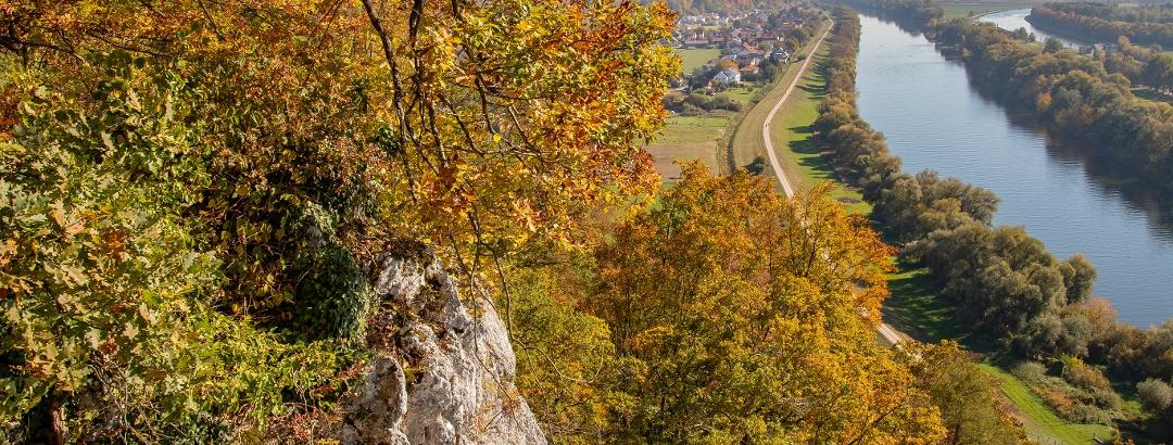 Herbst in den Oberndorfer Hängen