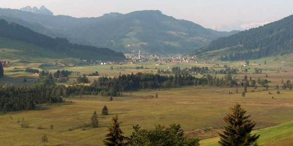 Blick auf das ganze Hochmoor von Rothenthurm