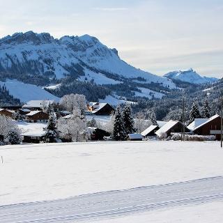 Winterpanorama vom Winterwanderweg ob Finsterwald