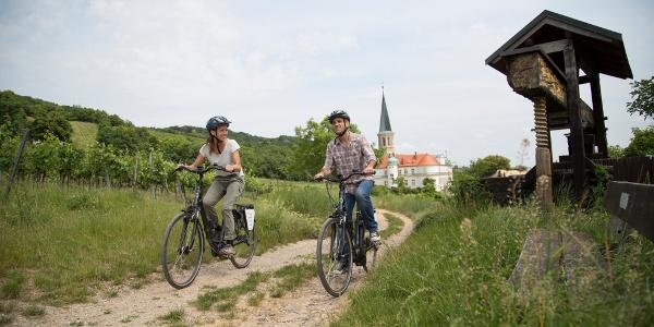 Weingartenradweg bei Gumpoldskirchen