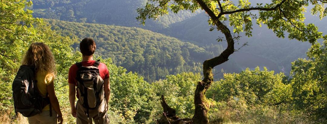 Wandern & Wellness: Luxus zwischen Saar und Mosel