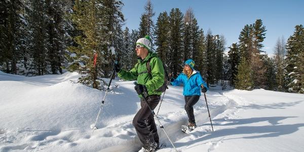 Snowshoe trail Plauns