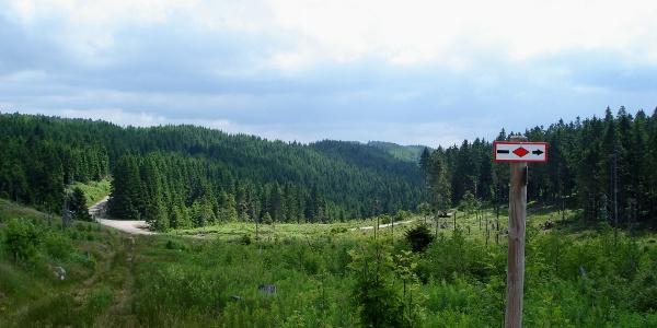 Von der Lettstädter Höhe zum Glaswaldsee