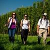 Wandern im Spalter Hügelland