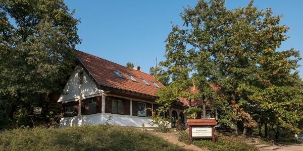 Tájmúzeum a Pákozd-Sukorói Arborétumban