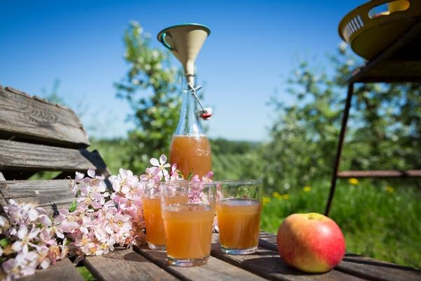 Apple cider of Sweden