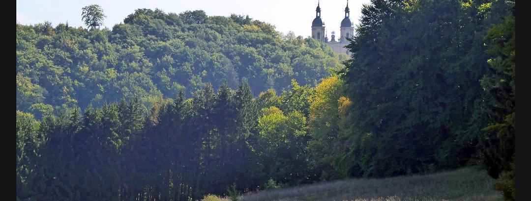 Basilika Gößweinstein vom Weg von Behringermühle nach Moritz