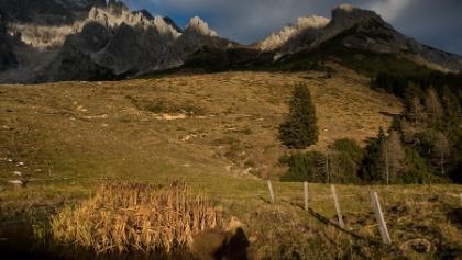 Rückblick zur Taghaubenscharte - links Grandlspitz, rechts Taghaube