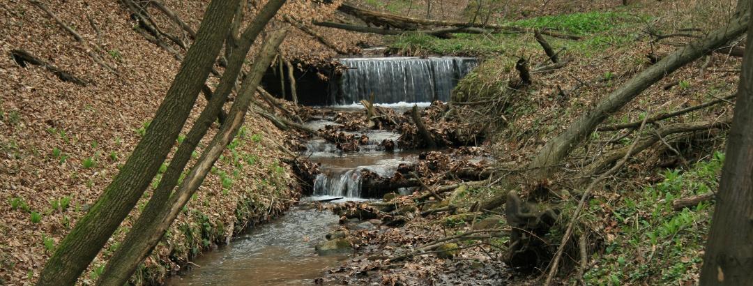A Szuadó egyik vízesésekkel, zúgókkal tarkított szakasza