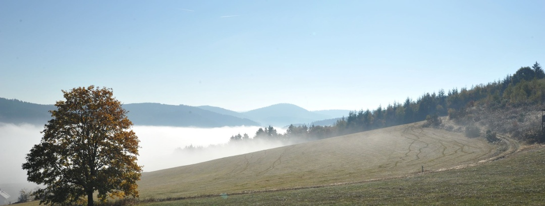 Via Celtica - Aussicht 2