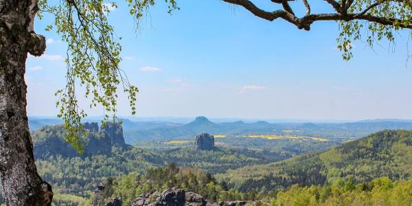 Schöne Aussicht von der Oberen Affensteinpromenade zum Falkenstein und zu den Schrammsteinen