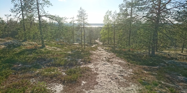 View from hill Akkovaara