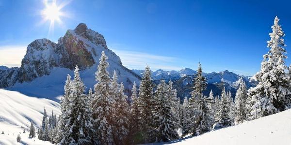 Weitsicht in die Allgäuer und Tiroler Alpen
