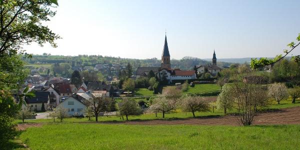 Panoramablick auf Oberöwisheim