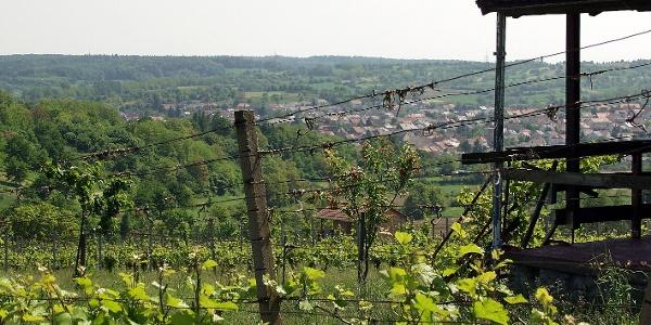 Blick auf Kraichtal-Unteröwisheim