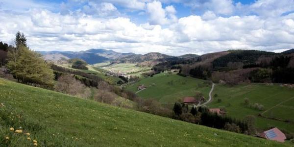Panoramablick Welschensteinach