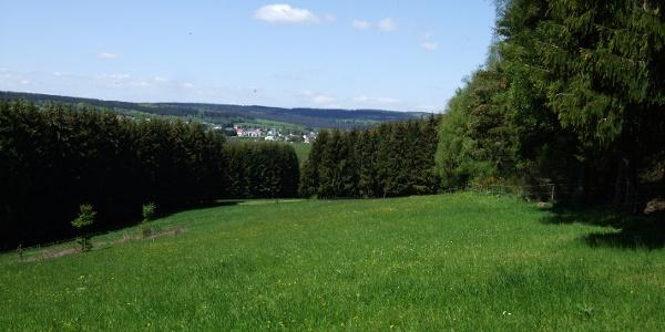 Blick auf Reinsfeld