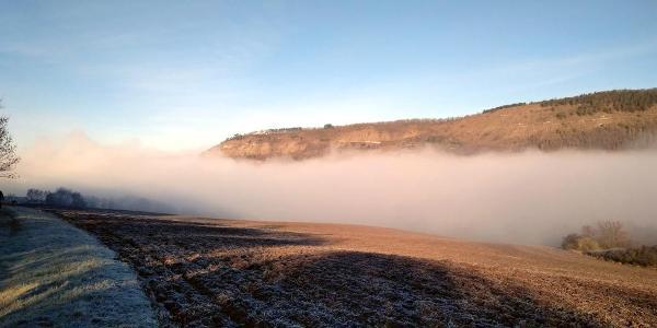 der Jenzigbergrücken im morgendlichen Nebel