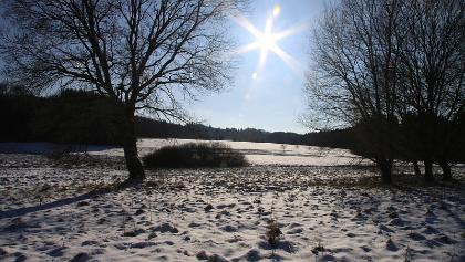 RZ-Winterwandertag am Stöffelpark