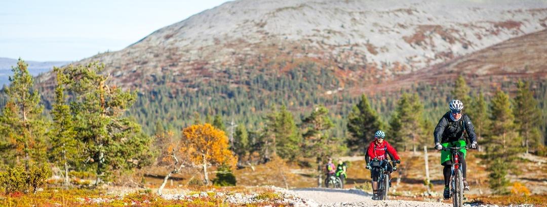 Mountain biking to Kukastunturi Fell in Pallas-Yllästunturi National Park.