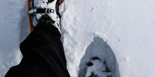 Die Schneeschuhe leisten derzeit gute Arbeit