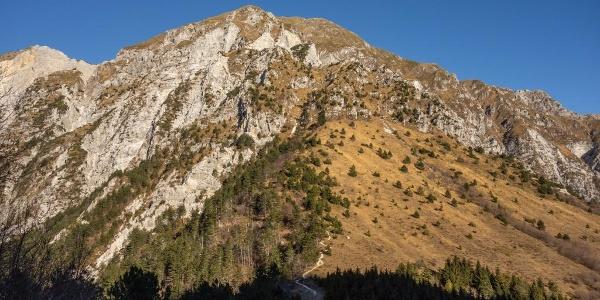 Ausblick auf den Anstieg auf den Monte Chiampon (Cjampon)