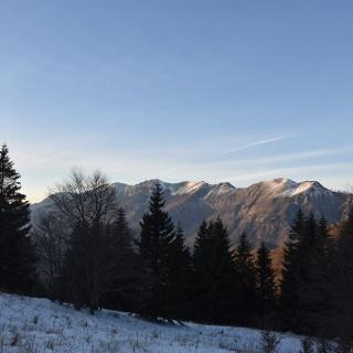 Sul limite degli alberi, la vista sul monte Črna prst