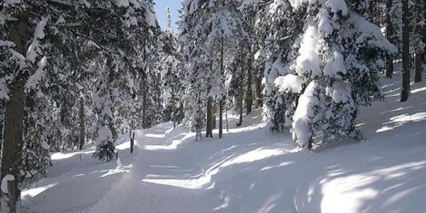 Winterwandern ab der Haustüre