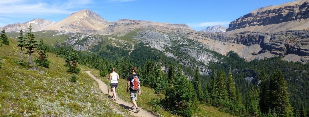 Wanderer Banff